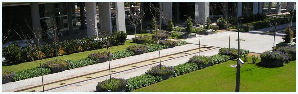 Diseño, construcción y mantenimiento de espacios verdes